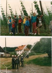 1987-06-017