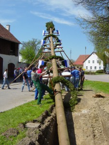 2005-05-175