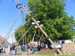 2007-05-1-024
