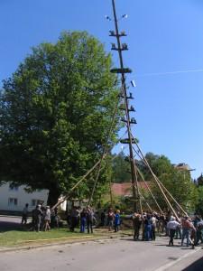 2007-05-1-157