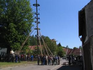 2007-05-1-187