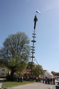2012-05-01-155