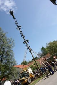 2012-05-01-167