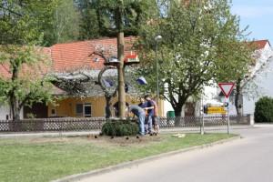 2012-05-01-186
